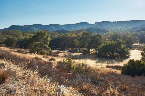 Caspers Wilderness Park ~ Only 45 minutes from Newport Beach CA